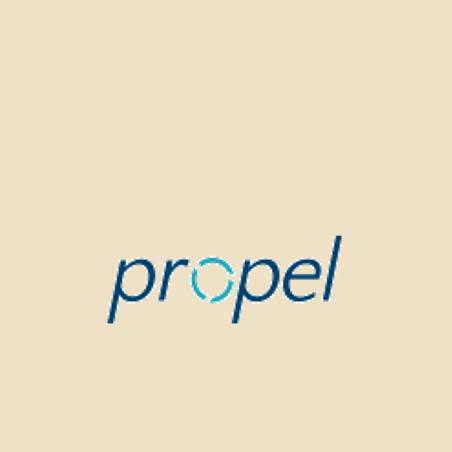 Propel Partner.png