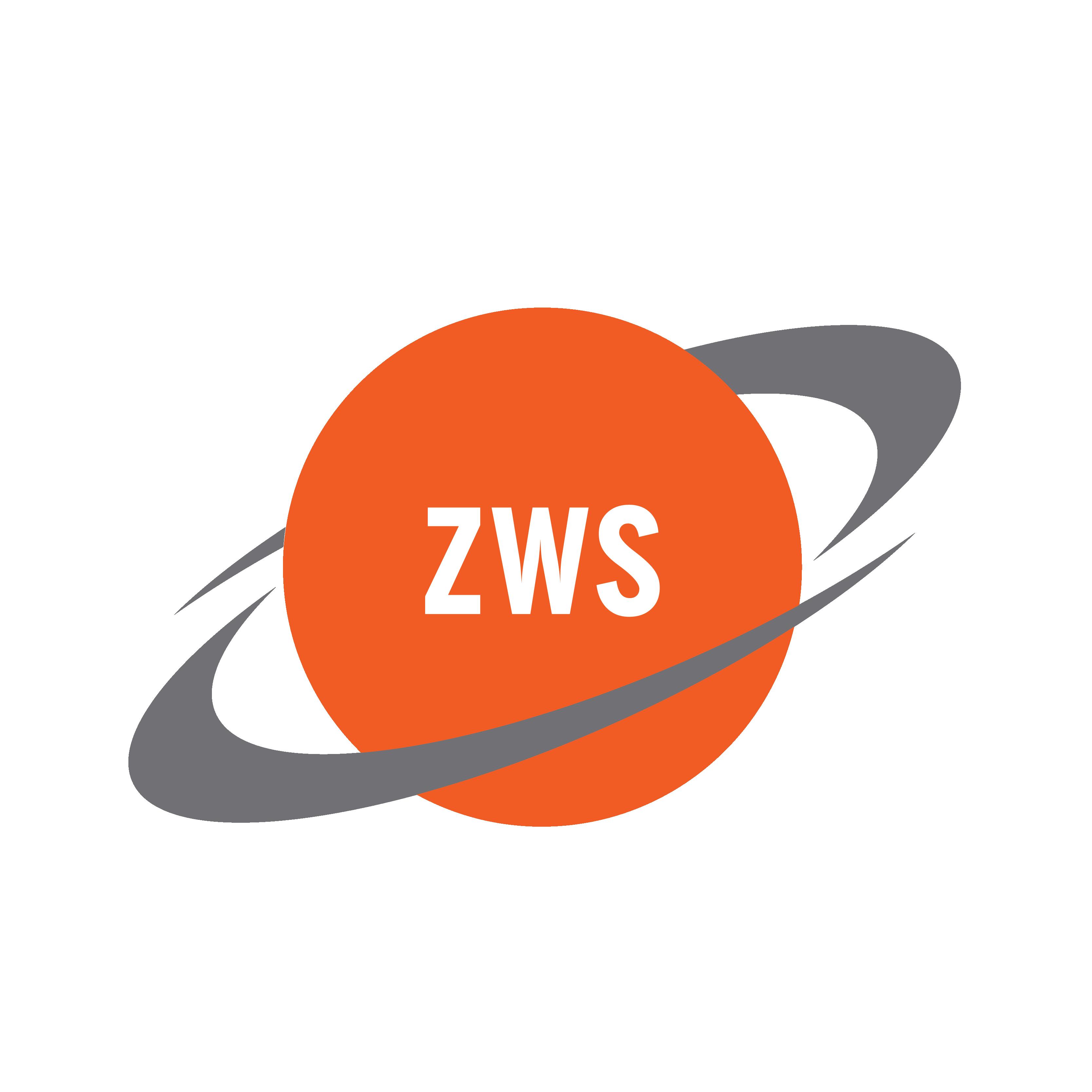 ZWS PLM Experts